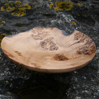 Wooden Free Form Plate